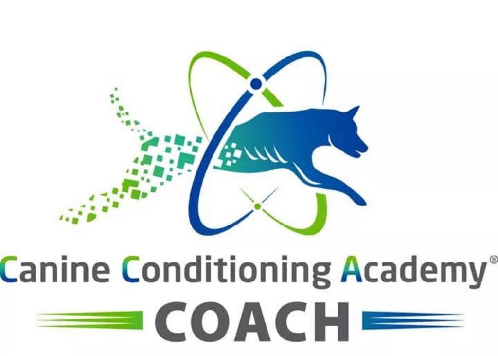 Picture to show Lynnette is a accredited canine conditioning academy coach.